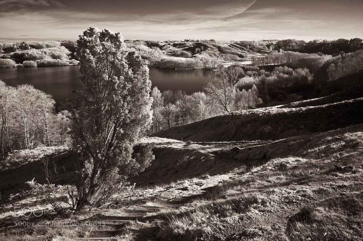 Photograph Dollerup Hills in infrared by Daniel Hoffmann on 500px