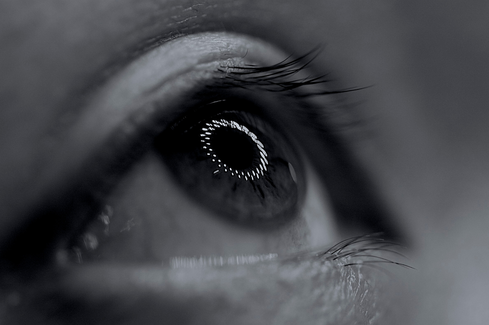 Photograph FOCUSING EYE by by  ad on 500px