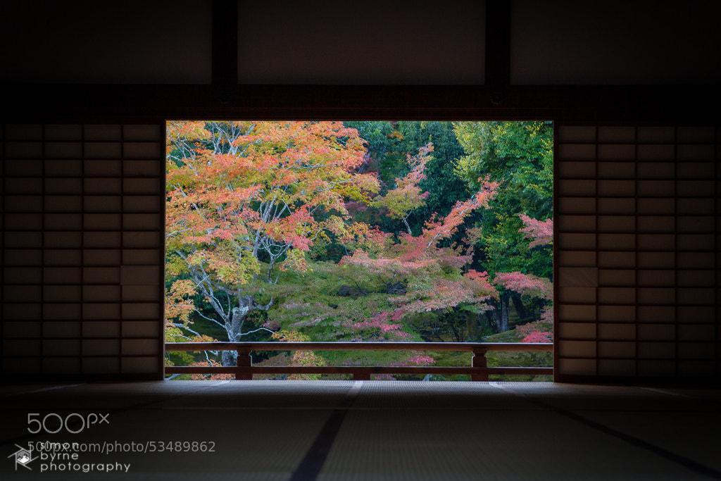 Photograph Tenryu-ji, Kyoto, Japan by Simon Byrne on 500px