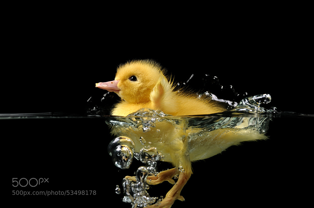 Photograph un petit bain ça fait du bien by Thierry Vialard on 500px