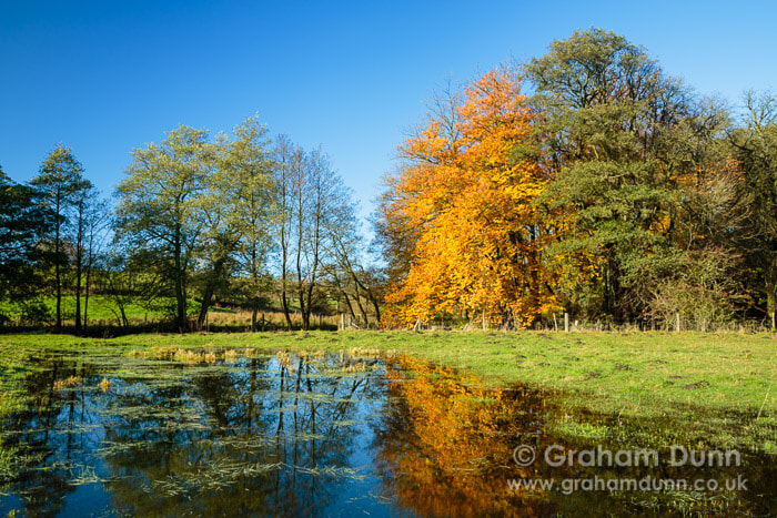Photograph Autumn reflections, Beresford Dale - Peak District by Graham Dunn on 500px
