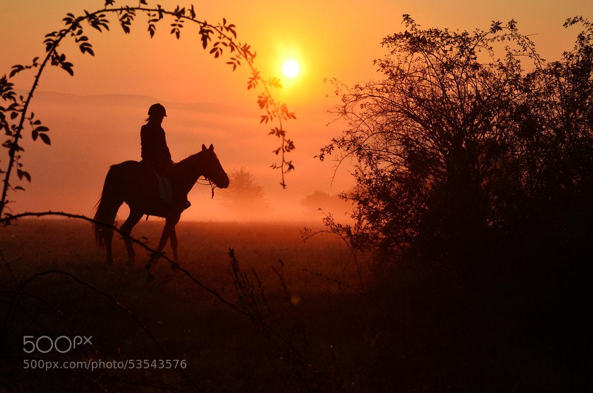 Photograph Morning ride by Peter Kováč on 500px