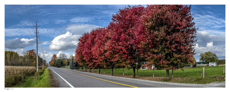 Townline Road Colour
