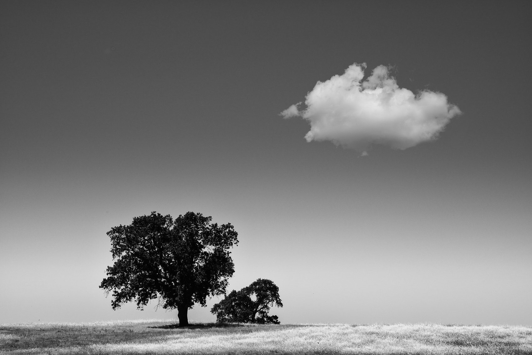 Photograph Balance by Mike Wiacek on 500px