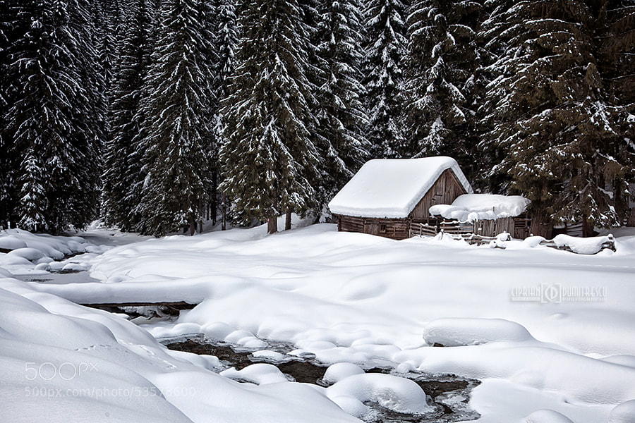 Photograph Fairytale winter by Ciprian Dumitrescu on 500px