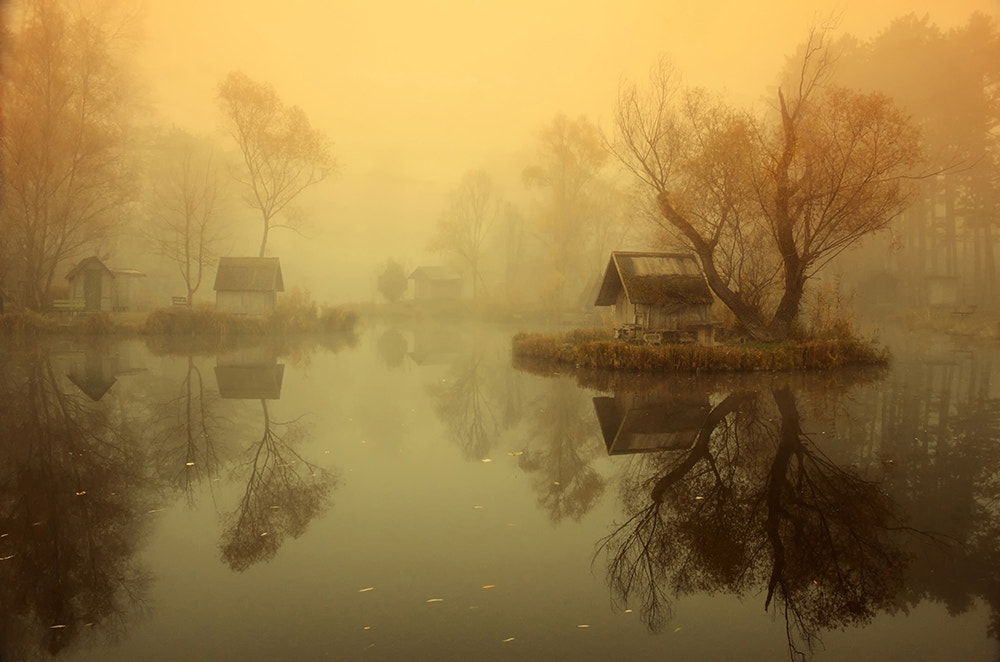 Photograph Misty Sunday Morning by Piroska Pádár on 500px