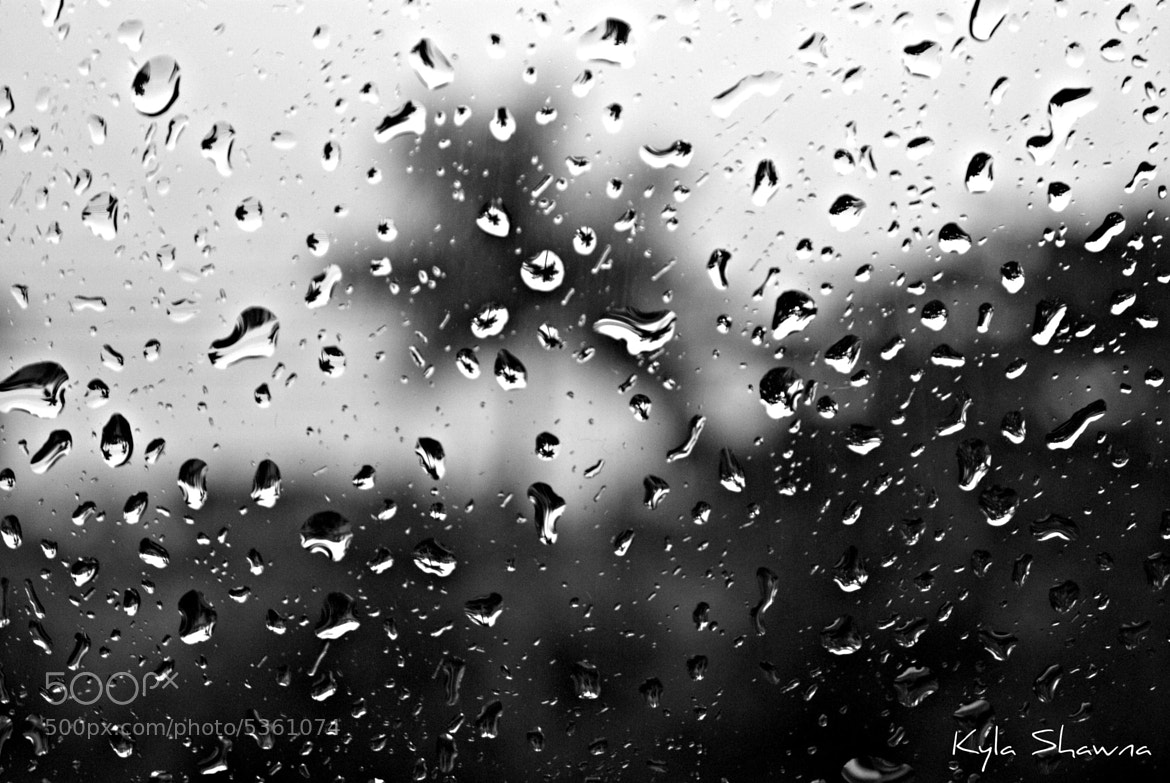 Photograph Water drops on window by Kyla Shawnn on 500px