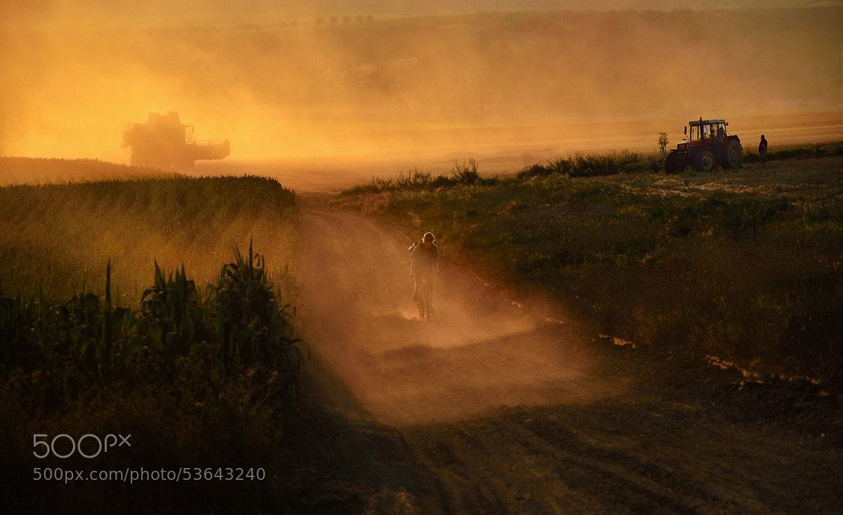 Photograph Harvest by Peter Kováč on 500px