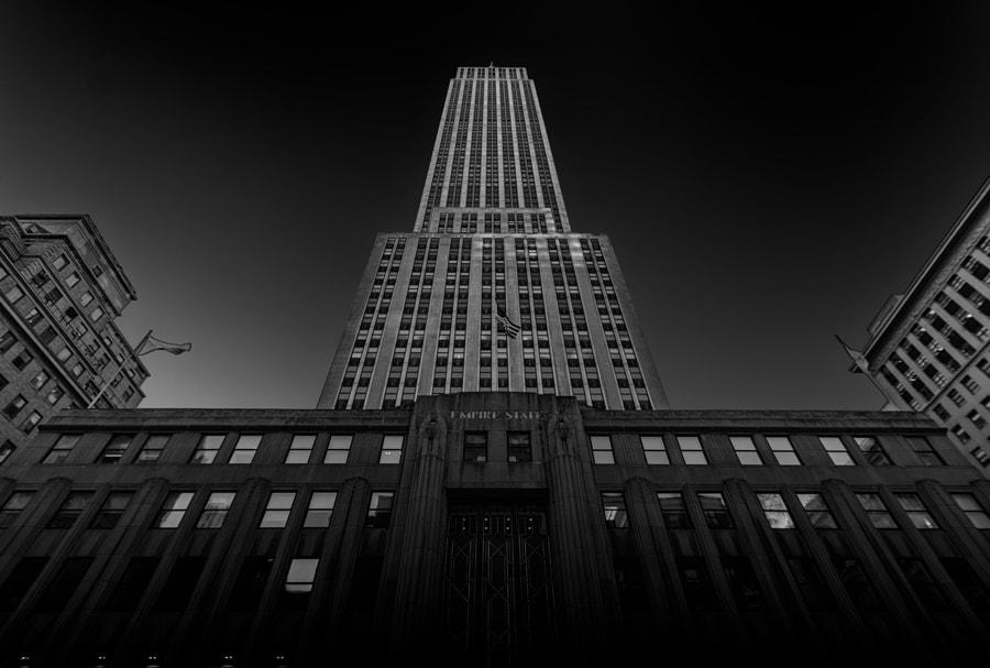 NY#12
