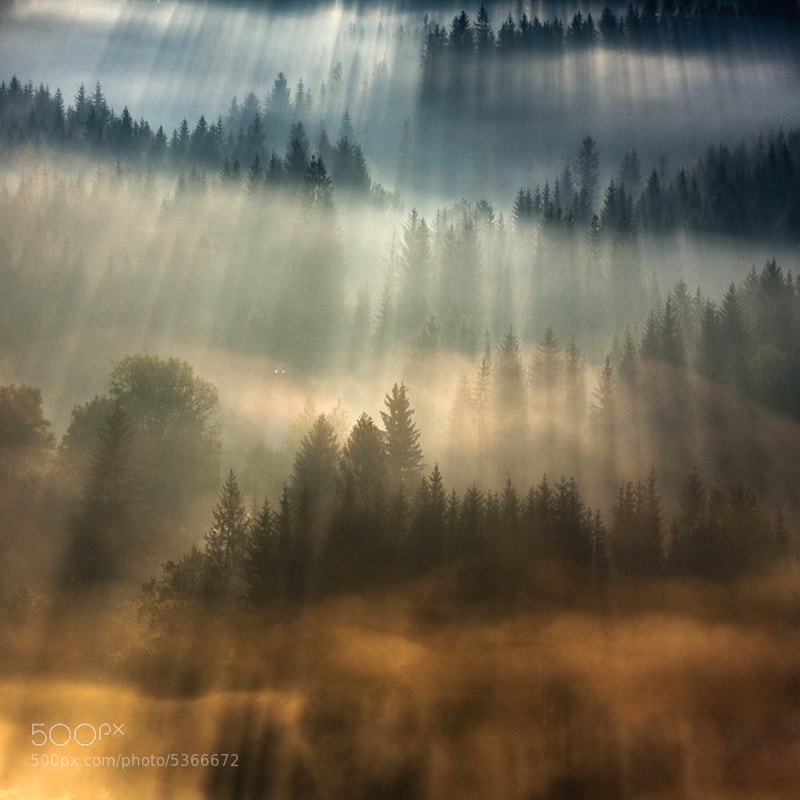In the Morning Mists: Stunning Photography by Marcin Sobas
