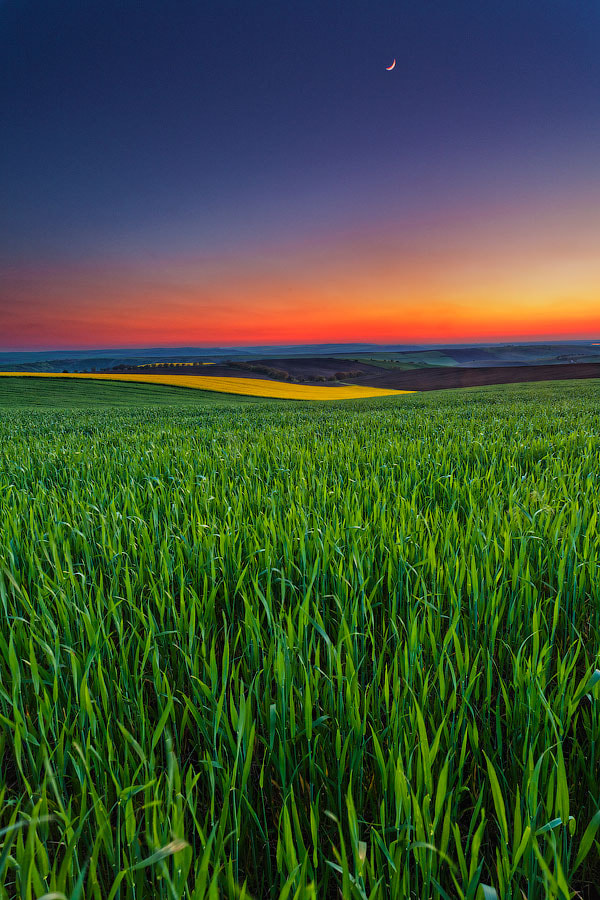 Photograph Twilight Fields by Evgeni Dinev on 500px