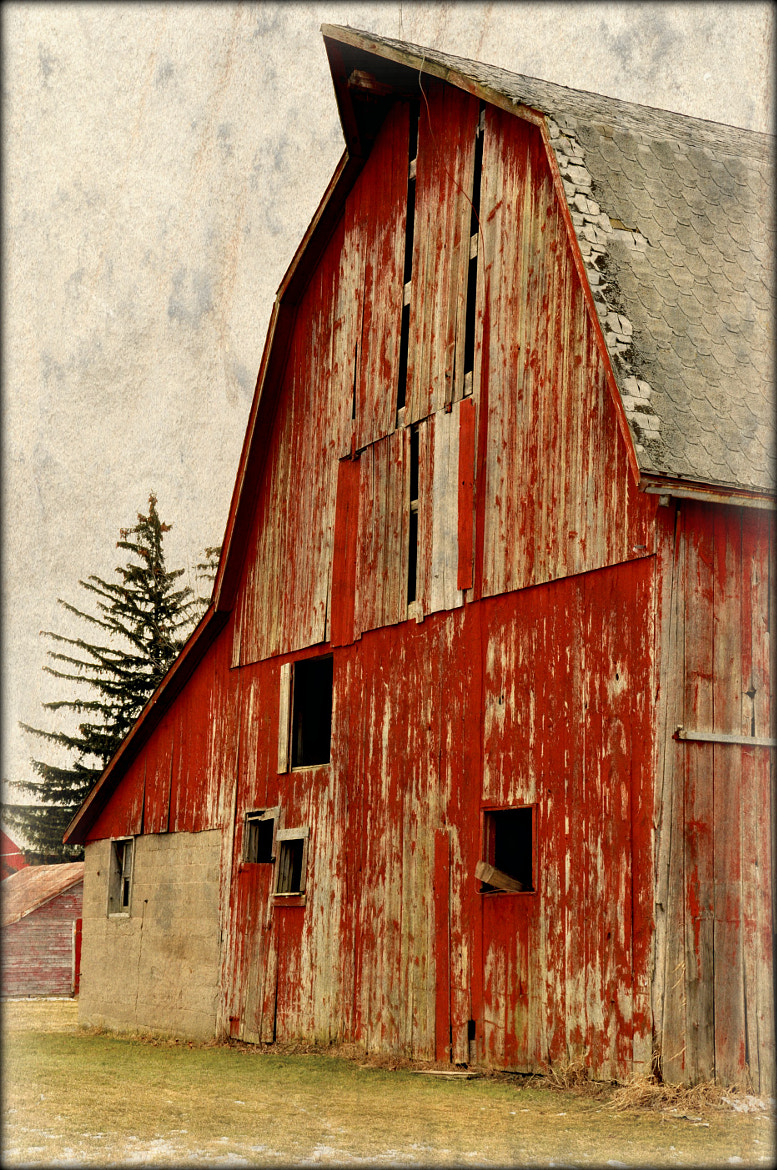 Photograph Old Red by Kimberly Hart on 500px