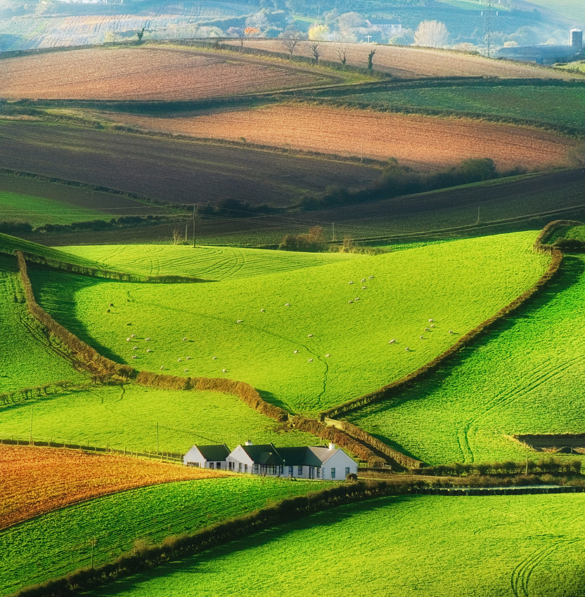 Photograph Irish farmland by Lukasz Maksymiuk on 500px