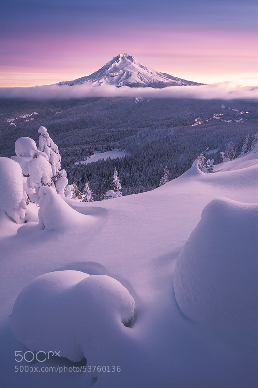 Interesting Photo Of The Day: Winter Bliss