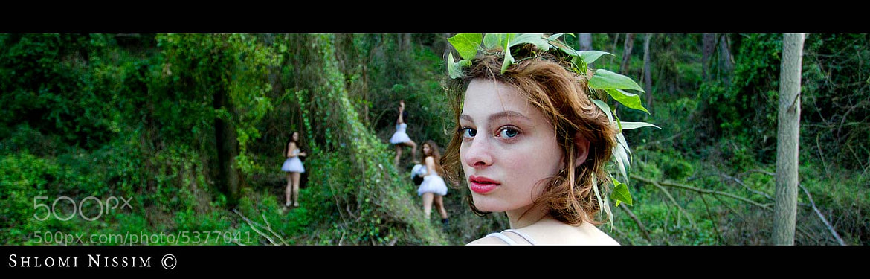 Photograph Fairys by shlomi nissim on 500px