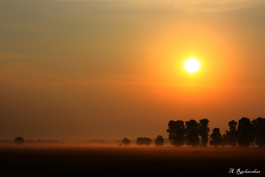 Photograph Morning in Poland by Arvis PhotoBeam on 500px