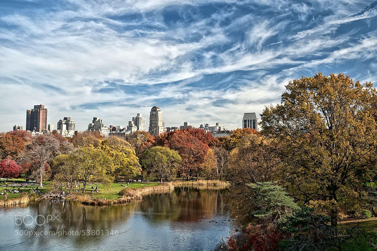 Photograph Sky over Central Park by Darek Siusta on 500px