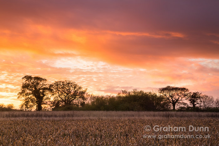 Photograph Dusk skies near Thornage - North Norfolk by Graham Dunn on 500px