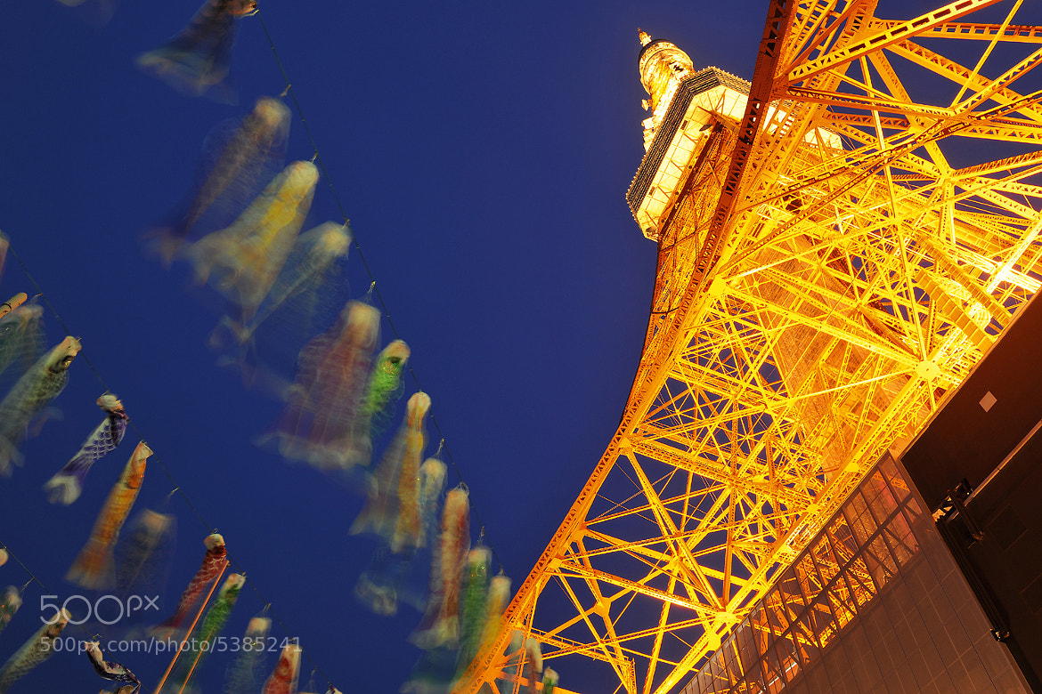 Photograph Kodomo no hi Tokyo Tower by Laurent Thery on 500px