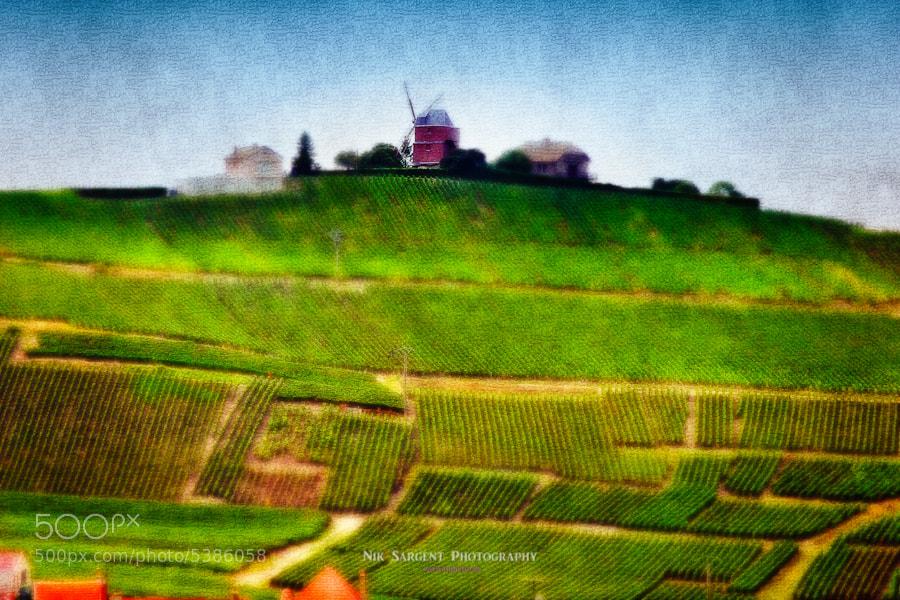 Windmill nr. Verzy, Champagne, France - surrounded by vineyards