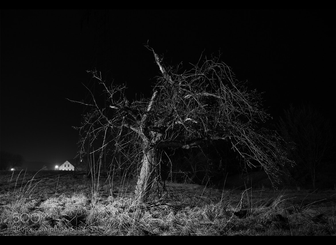 Photograph Alone in the Darkness by Tino Schneider on 500px