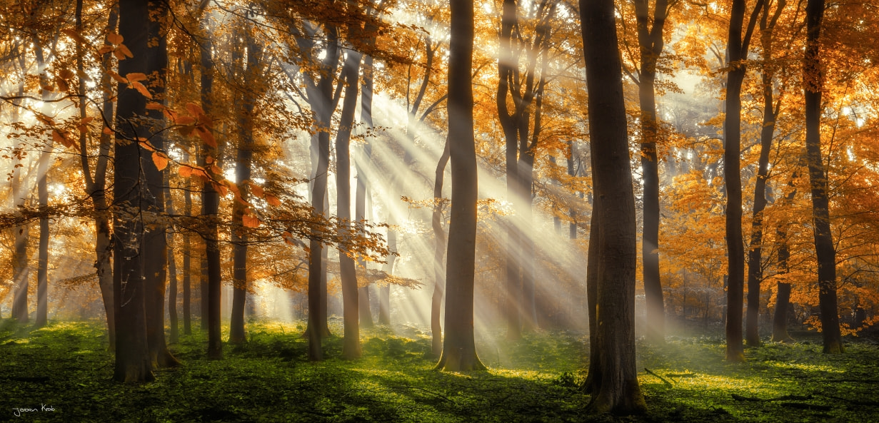 Photograph Rays Of Luck by Jeroen Krab on 500px