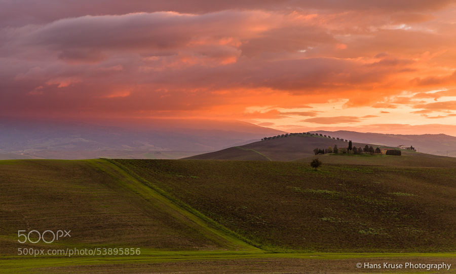 """This photo was shot during the Tuscany November 2013 photo workshop at a location with rollings hills and the trees on top of the hill and hence the nick name """"the dragon"""".   There is a new photo workshop taking place in Tuscany in November 2014. Check my homepage for details."""