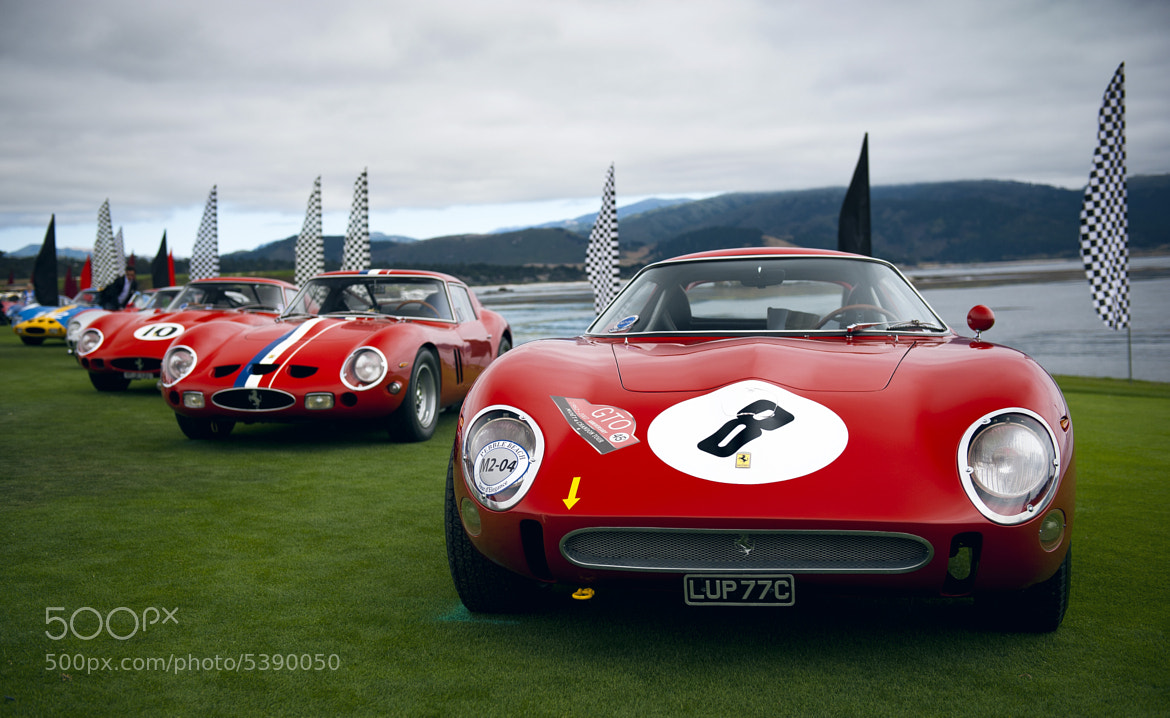 Photograph GTO's at Pebble Beach by Otis Blank on 500px