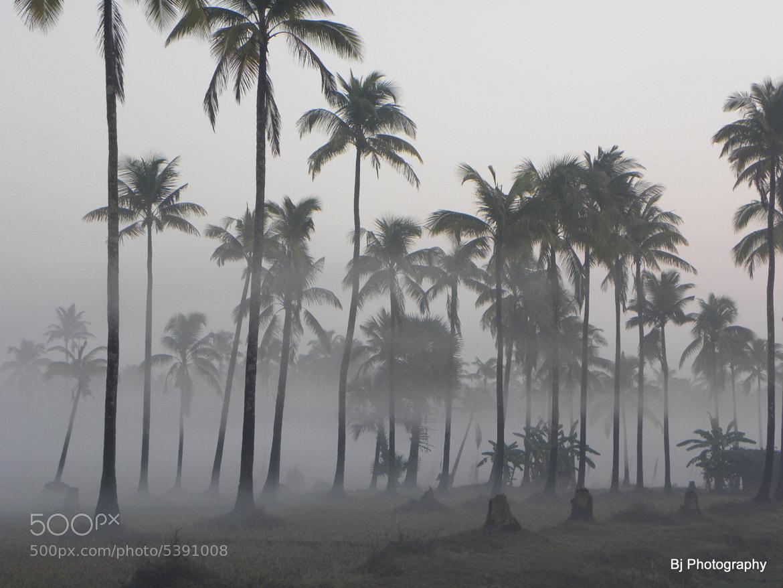 Photograph Misty Morning -2  by Bijay Shrestha on 500px