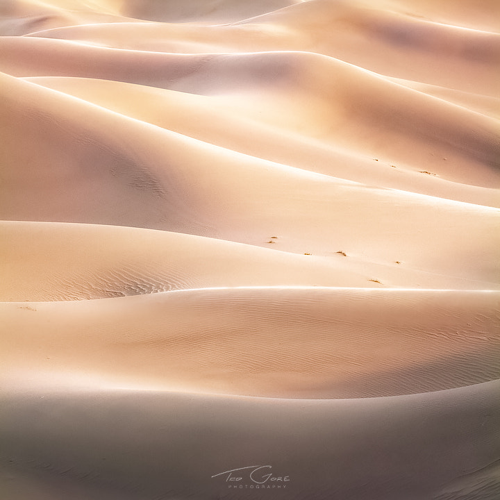 Photograph Diffracted Dunes by Ted Gore on 500px