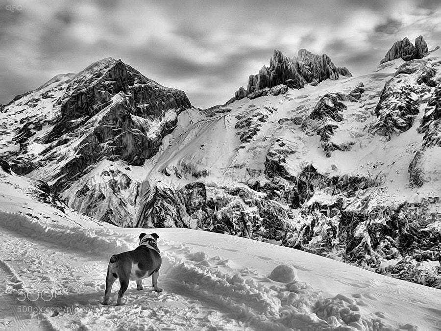 Photograph Fifteen below zero by Gemma  on 500px