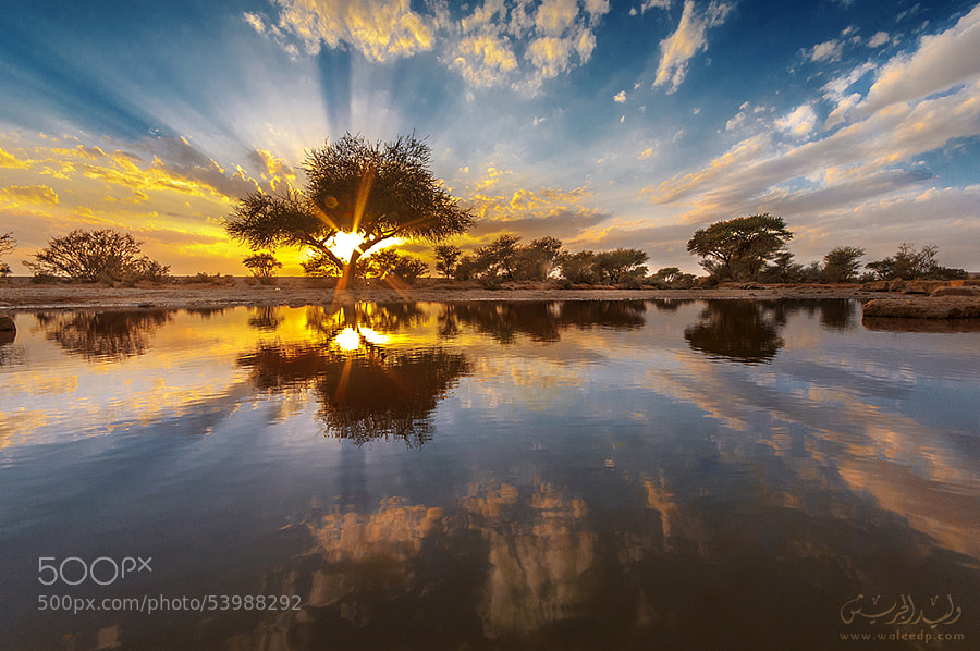 Sun sunset II by وليد الجريش