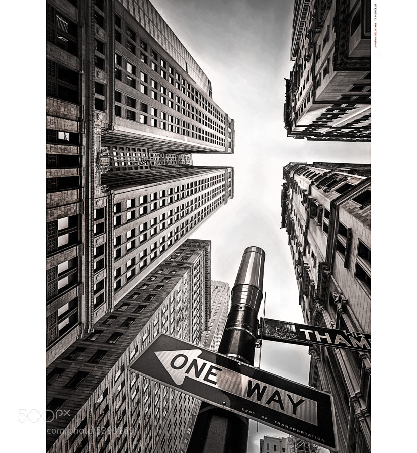 One Way Up by Steven Li