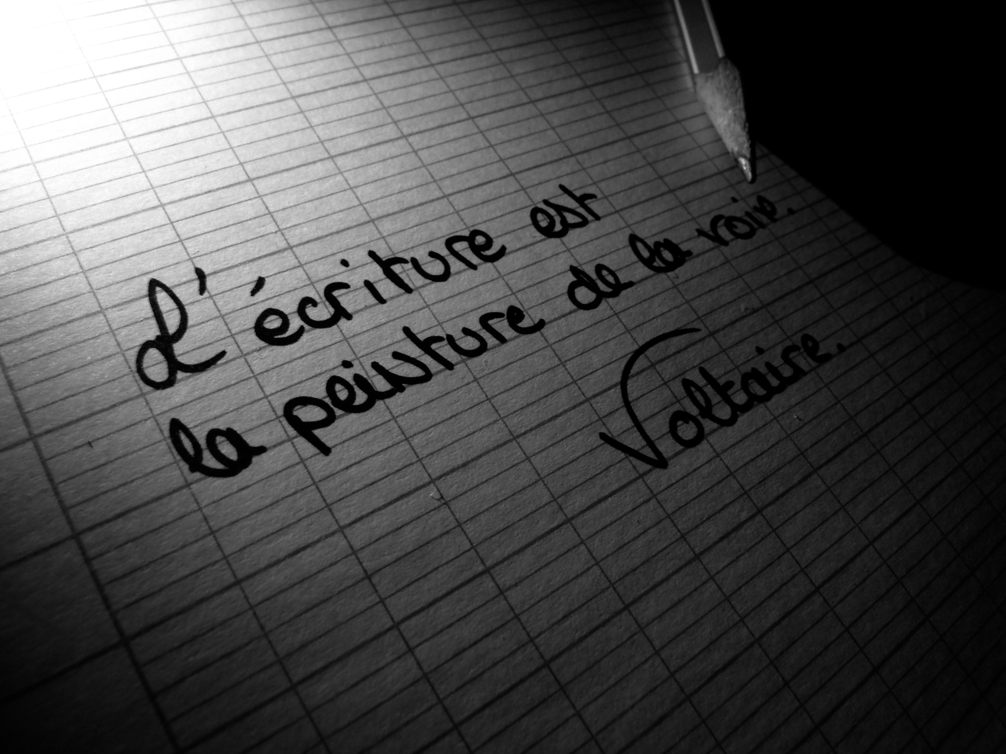 Photograph Voltaire by Jean-Patrice Clerc on 500px