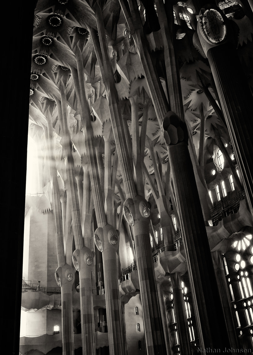 Photograph Sunlight - Sagrada Familia by Photo Bones on 500px