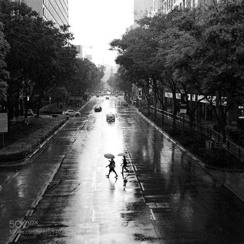 Photograph Crossing by Yan Leong Lee on 500px