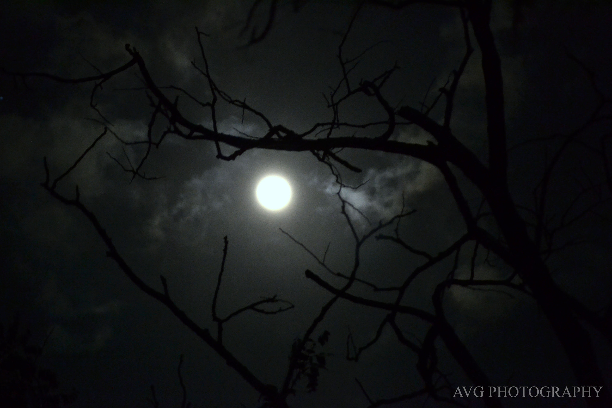 Photograph The Eerie Night Sky by Aviral Gupta on 500px