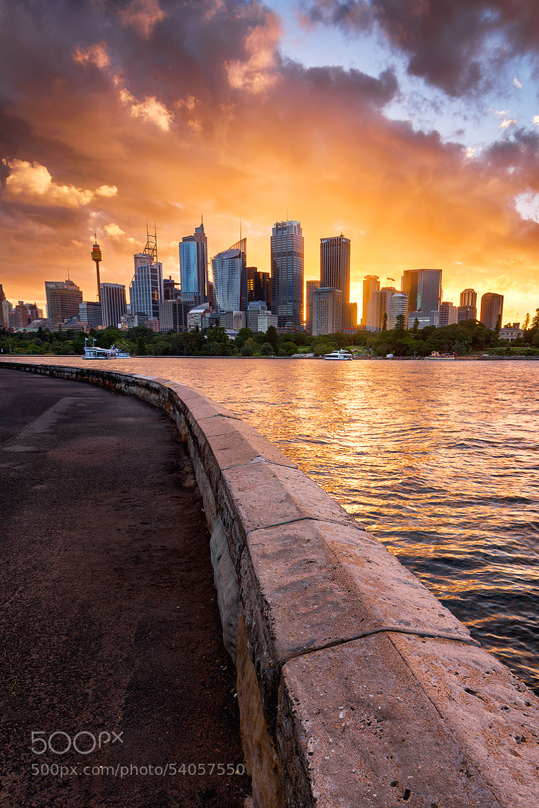 Photograph Sydney Skyline by Joshua Zhang on 500px