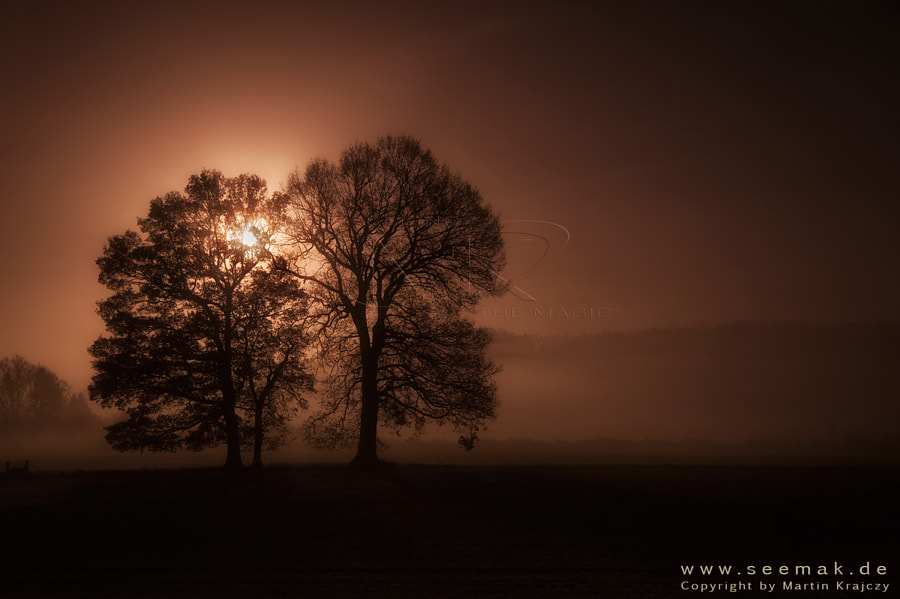 This autumn sunrise shot is take on a great morning with some magical light situations in northern Germany.