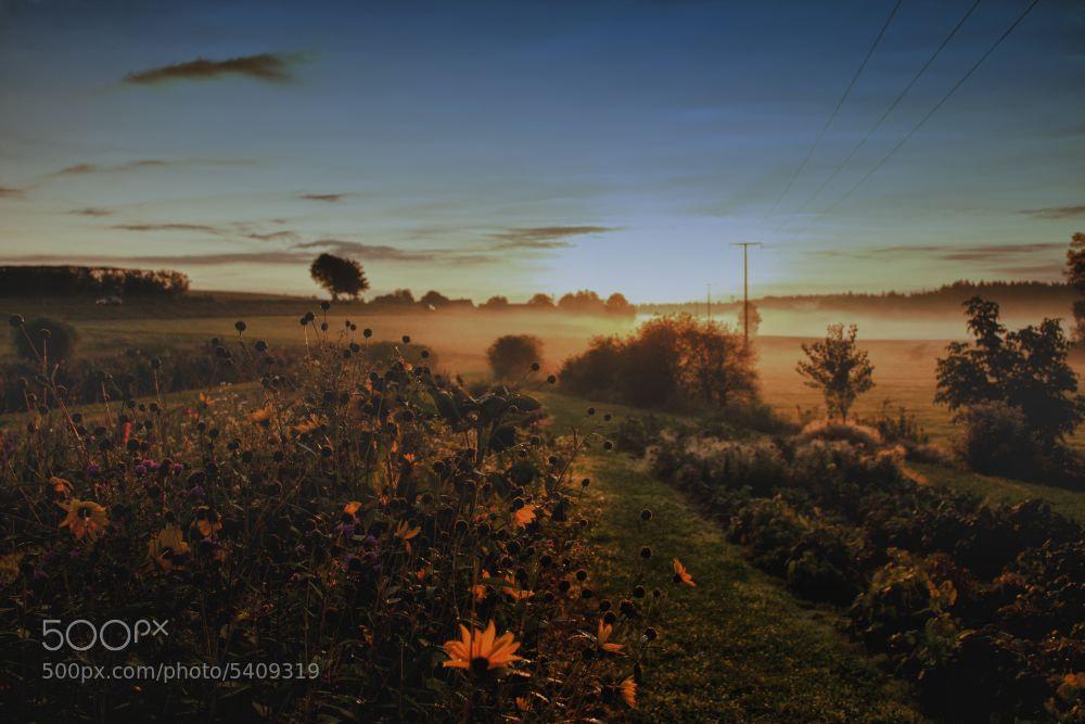 Photograph foggy Sunrise by Florian Bieg on 500px