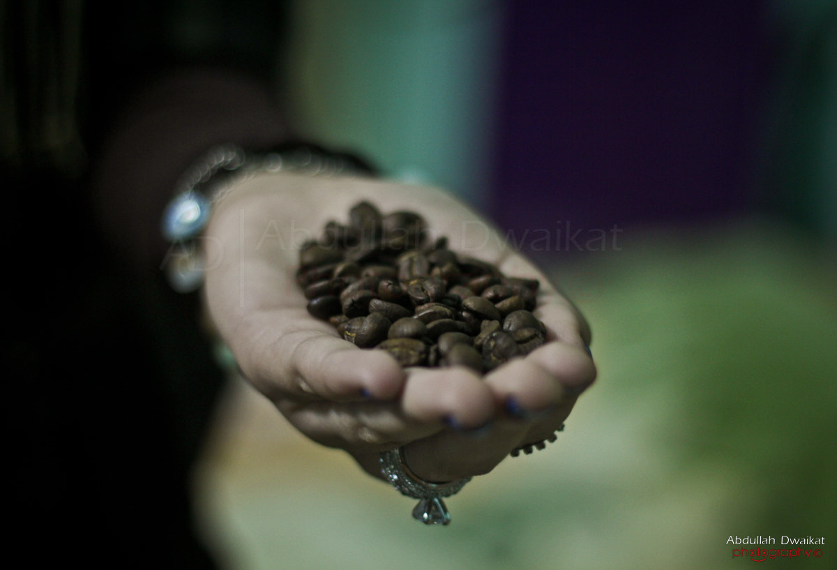 Photograph Would you like some beans ?! by Abdullah Dwaikat on 500px