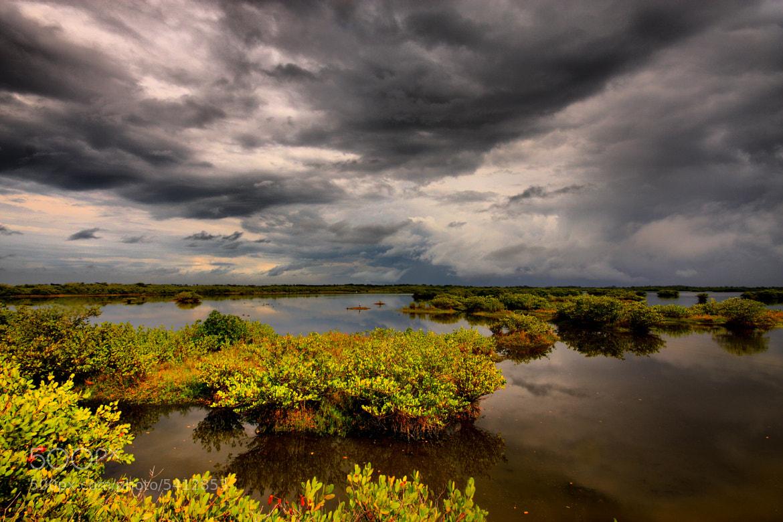 Photograph Merritt Island NWR Storm by Scott Helfrich on 500px
