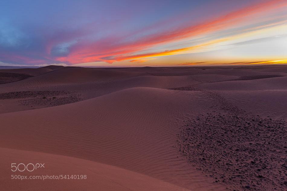 Photograph Desert sunset by Emelianenko Dmitrii on 500px