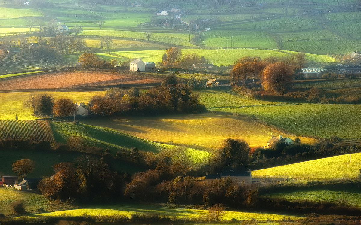 Photograph Fields of harmony by Lukasz Maksymiuk on 500px