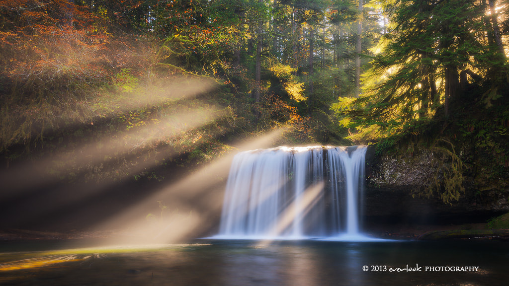 Photograph Shining through by Dylan Toh  & Marianne Lim on 500px