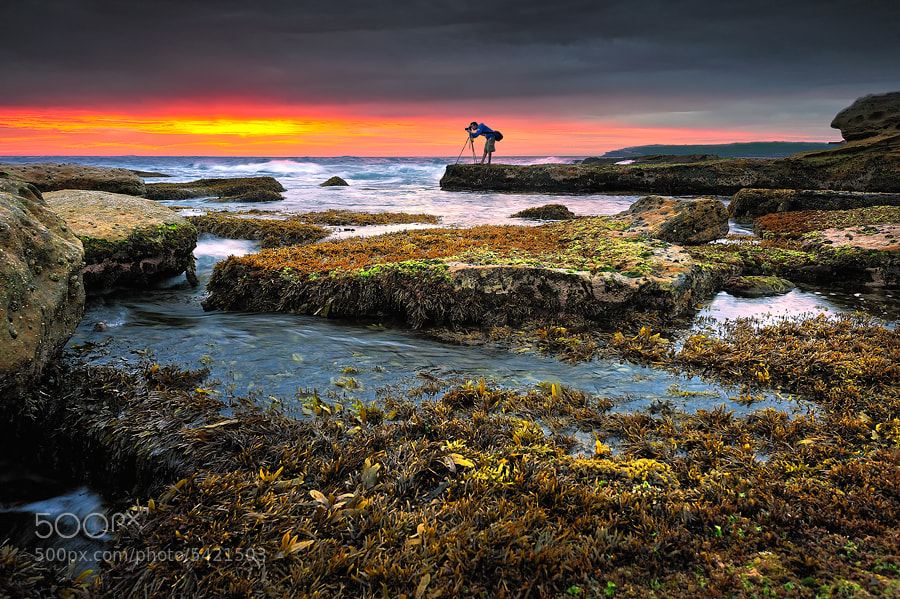 Photograph Morning Low Tides by AtomicZen : ) on 500px