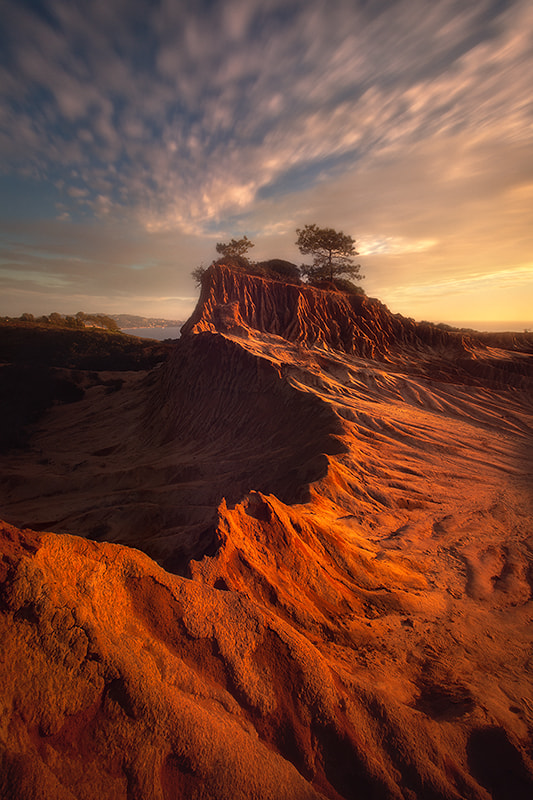 Photograph king of the hill by Max Vuong on 500px