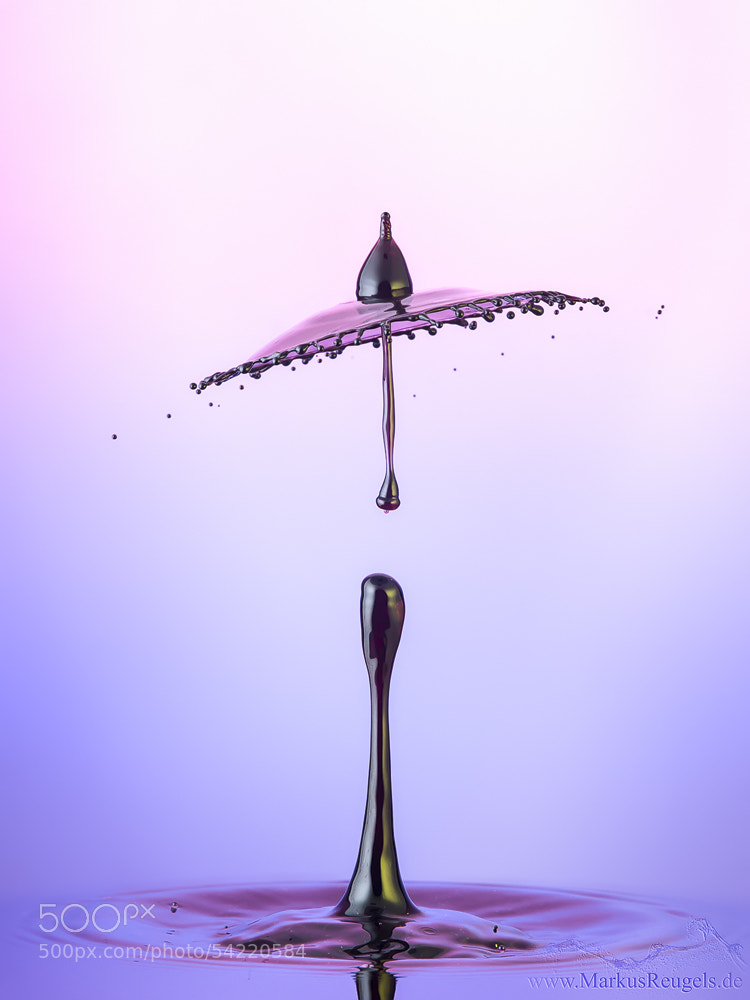 Photograph Purple rain by Markus Reugels on 500px