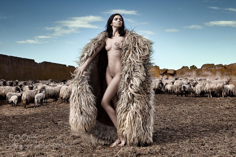 Photograph The Good Shepherd II by Daniel Ilinca on 500px
