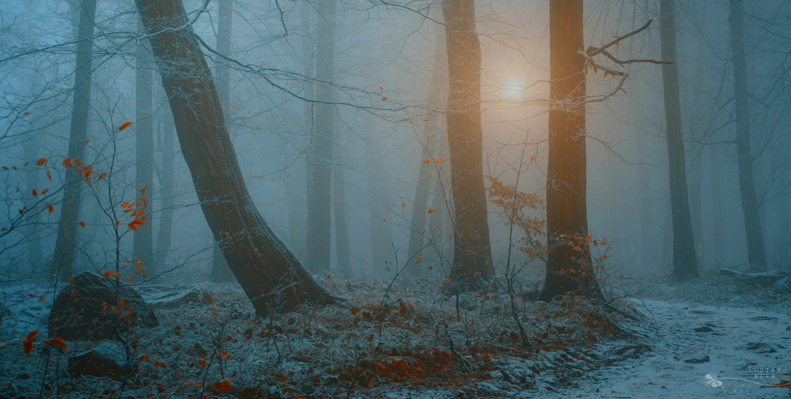 Photograph Keep that Moment by Ildiko Neer on 500px